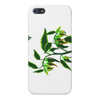 Grüne Pflanzengraphik des Pfeffers mit Wortpfeffer iPhone 5 Case