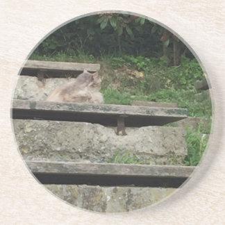 Grüne Treppe Sandstein Untersetzer
