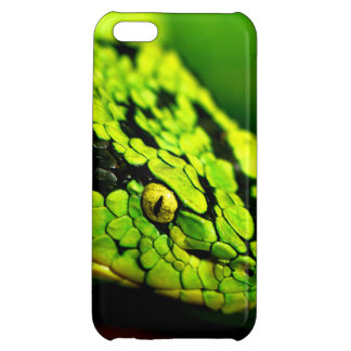 Grüner schwarzer Streifen-Schlangen-Kopf iPhone 5C Cover