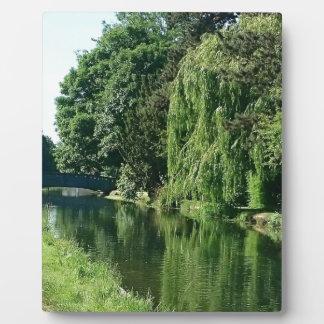 Grüner sonniger Frühlingstagesgrünbaum-Flussweg Fotoplatte