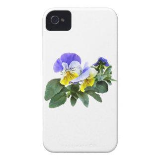 Gruppe gelbes und lila Stiefmütterchen iPhone 4 Hülle