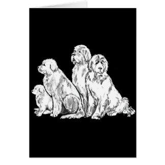 Gruppe Neufundland-Hunde Karte