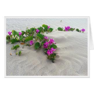 Gruß-Karte, Strand-Winde Karte