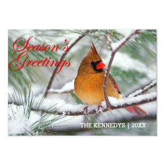 Grüße - NordKardinal im schneebedeckten 12,7 X 17,8 Cm Einladungskarte