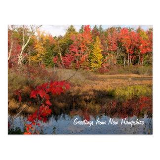 Grüße von den NH-Fall-Postkarten Postkarte