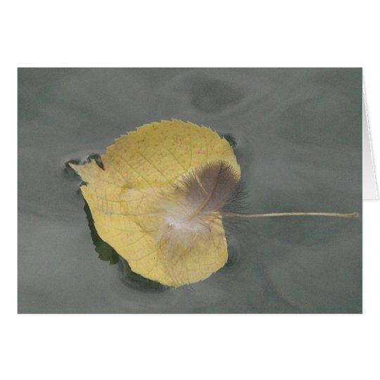 Grusskarte Feder auf gelbem Blatt im Wasser,blanko Karte