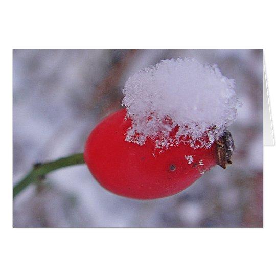 Grusskarte grosse Hagebutte mit Schnee, blanko Karte