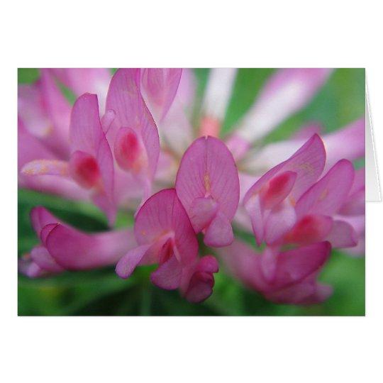 Grusskarte Kleeblütenblätter in pink, blanko Karte