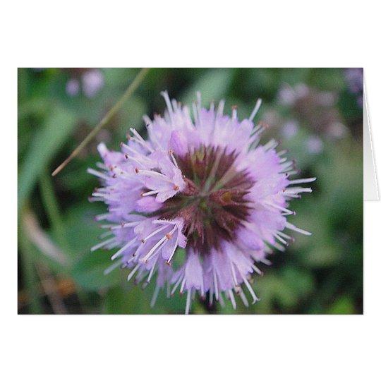 Grusskarte lila Blütenkugel, blanko,gestaltbar Karte