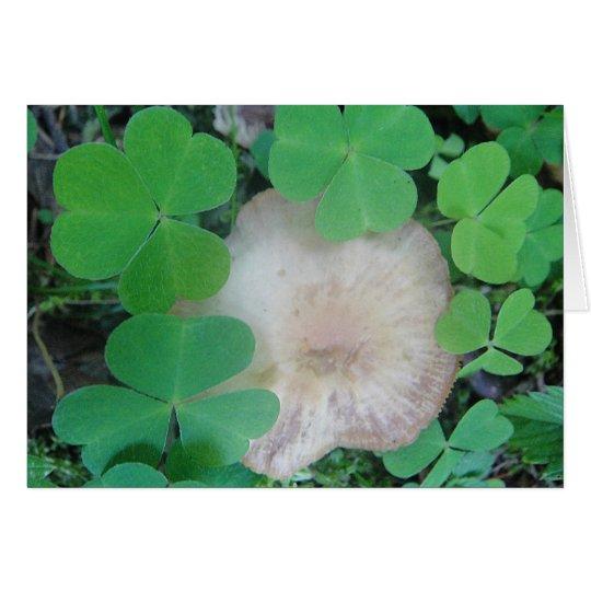 Grusskarte Pilz mit Kleeblattkranz Karte