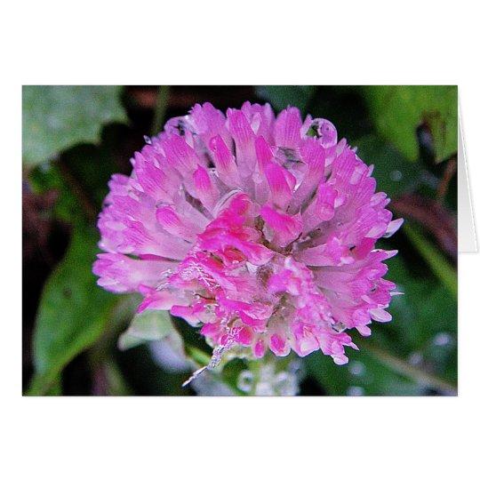 Grusskarte rosa Kleeblüte mit Eiskristallen Karte