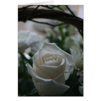 Grußkarten der weißen Rose der Beileids-Karte