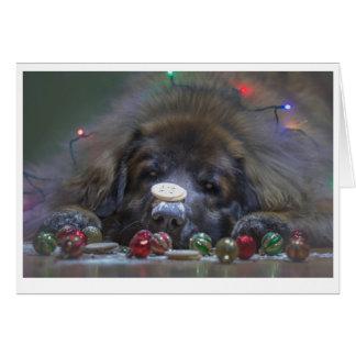 Gute Leonberger Weihnachtskarte Karte