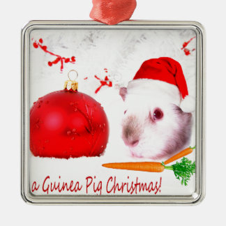 Haben Sie ein Meerschweinchen-Weihnachten Silbernes Ornament