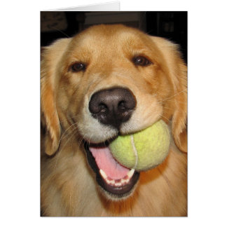 Haben Sie einen Ball! Grußkarte