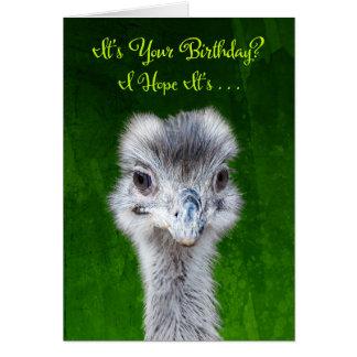 Haben Sie einen Emusing Geburtstag - Emu Karte