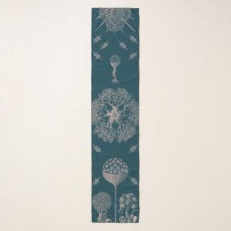 Haeckels Blau Schal