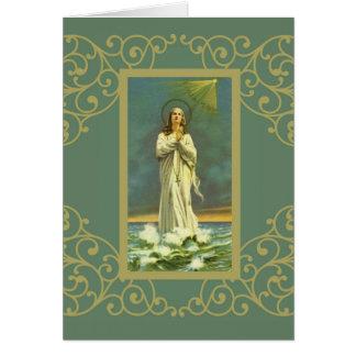 Hagel-Mary-Stern des Rosenbeetes Seeallee Maris Karte