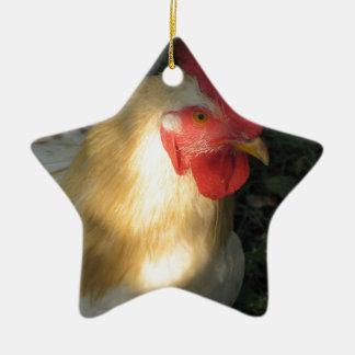 Hahn Keramik Stern-Ornament