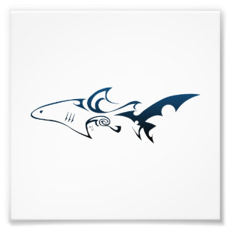 Haifisch Fotografischer Druck