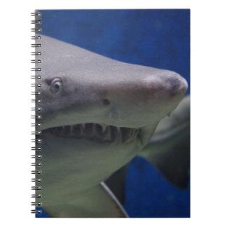 Haifisch-Gesicht Spiral Notizbücher