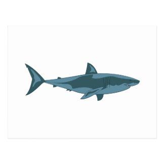 Haifisch Postkarte