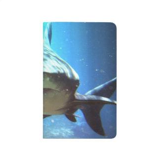 Haifische Tagebücher