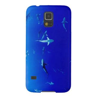 Haifische Unterwasser Samsung Galaxy S5 Cover