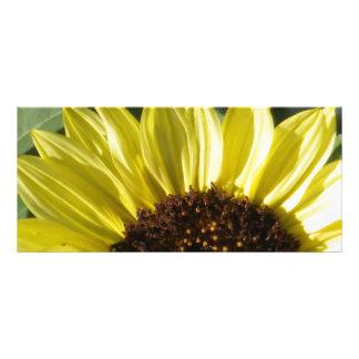 Halbe Sonnenblume Werbekarte