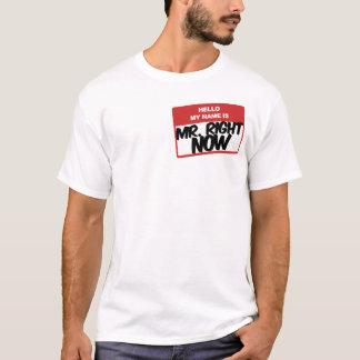 Hallo ist mein Name Herr im Augenblick T - Shirt