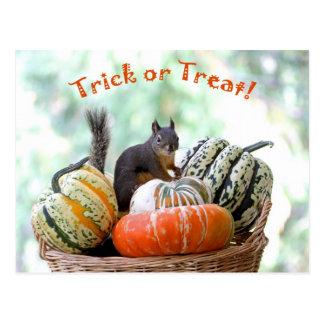 Halloween-Eichhörnchen Postkarte