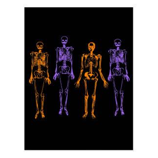 Halloween-Skelette Postkarte