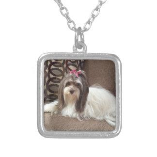 Halskette Havanese Hundmotiff