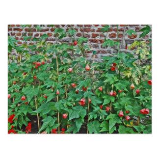 Hampton-Gerichts-Garten, rote Glocken-Blumen Postkarte