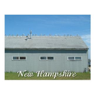 Hampton-Strand, New Hampshireseemöwen Postkarte