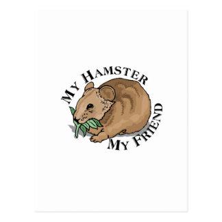 Hamster-Freund Postkarte