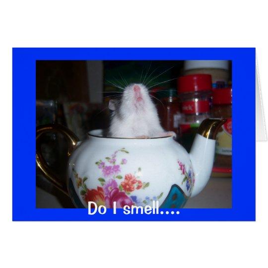 Hamster in der Teekanne Grußkarte