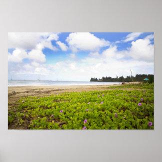 Hanalei Bucht, Strand-Blumen Kauais Hawaii Poster