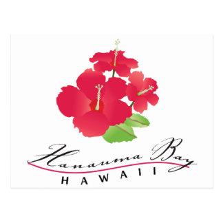 Hanauma Bucht Hawaii - rote Hibiskus-Blume Postkarte