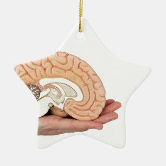 Hand, die Gehirnhemisphäre auf weißem Hintergrund Keramik Stern-Ornament