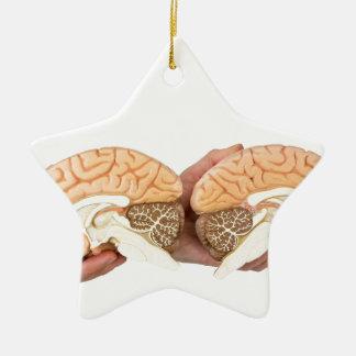 Hände, die vorbildliches menschliches Gehirn auf Keramik Stern-Ornament
