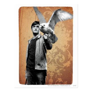 Harry Potter 12 Carte Postale