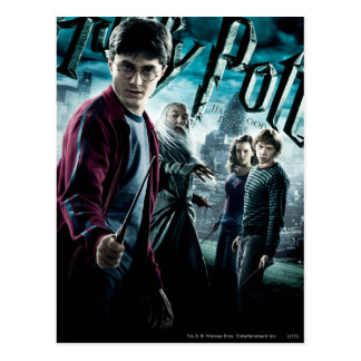 Harry Potter avec Dumbledore Ron et Hermione 1 Carte Postale