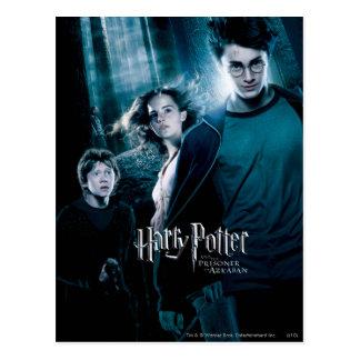 Harry Potter Ron Hermione dans la forêt Carte Postale
