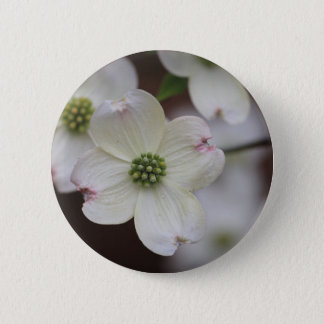 Hartriegel-Blüten Runder Button 5,7 Cm