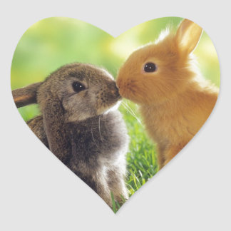 Häschen-Kuss Herz-Aufkleber