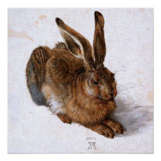 """""""Hasen"""" durch Albrecht Dürer, 1502 Poster"""