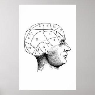 Hauptanatomie-Illustrations-Plakat Poster