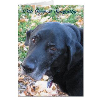 Haustier-Beileid Grußkarte
