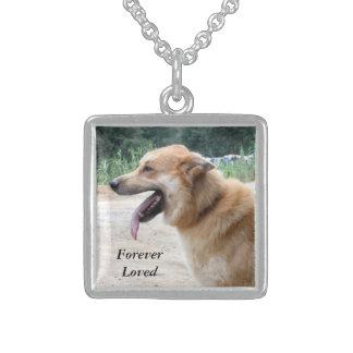 Haustier-Beileids-Foto-Halskette, Sterling Silberkette
